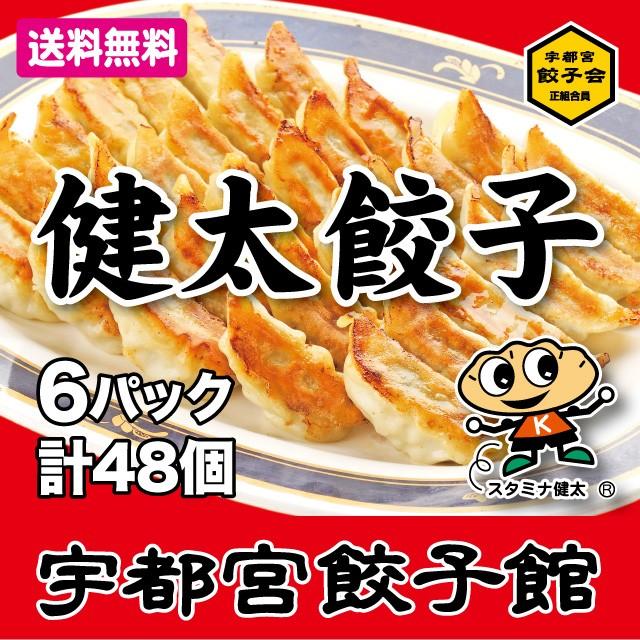 【送料無料】宇都宮餃子会 正組合員 宇都宮餃子...