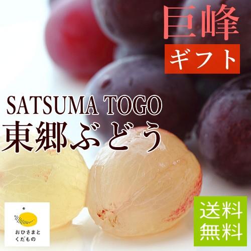 【7月末より収穫開始】巨峰3袋(約1kg)送料無料 ...