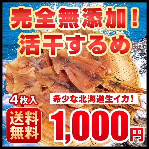 1000円 おつまみ 送料無料 ぽっきり 北海道産 無...