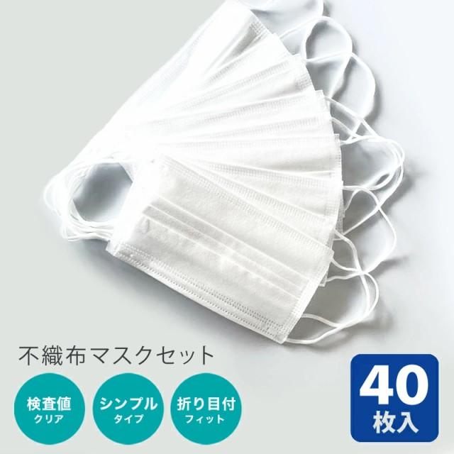 【ネコポス 送料無料】不織布 マスク ホワイト 40...