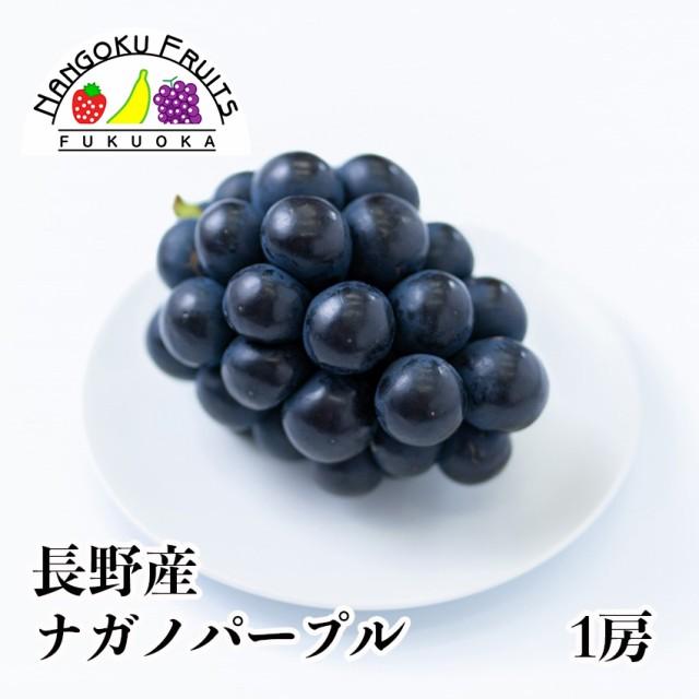 南国フルーツ・【予約販売・9月お届け分】長野産...