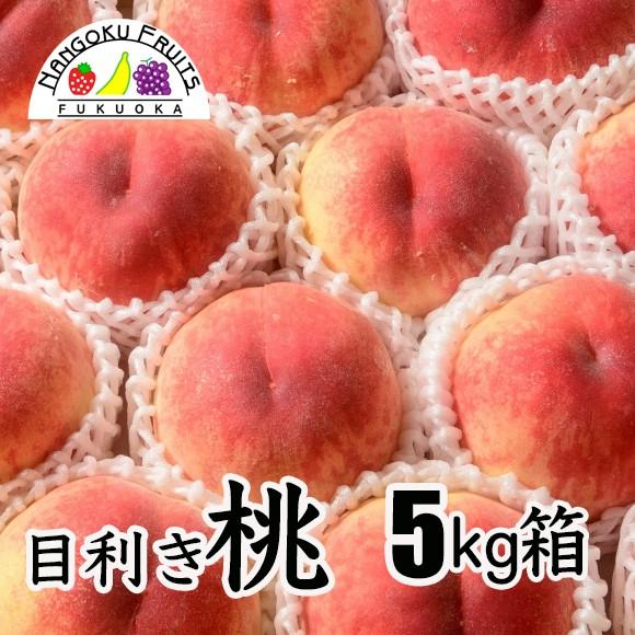 目利き桃 5kg箱