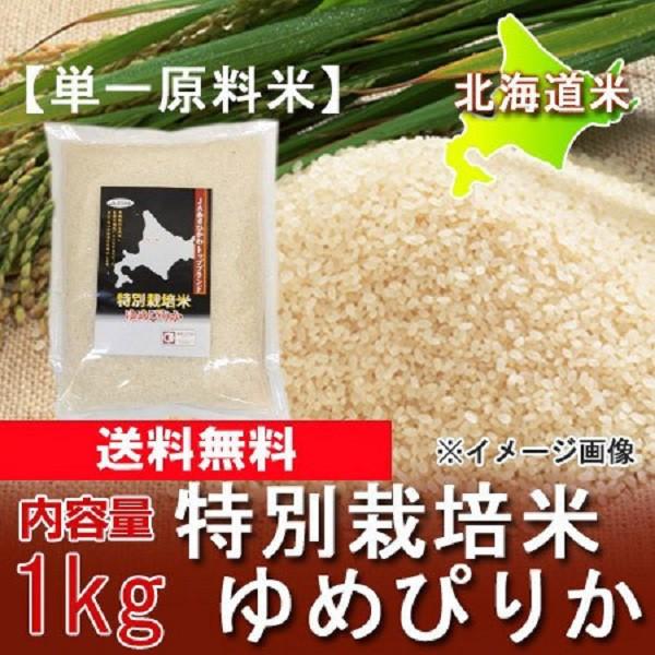 北海道 ゆめぴりか 送料無料  令和2年産 北海道産...