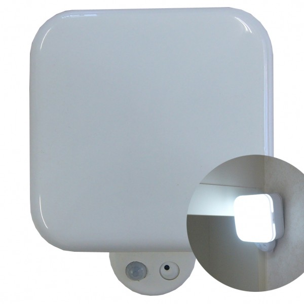 SD500 リーベックス 侵入者を感知して自動点灯&録...