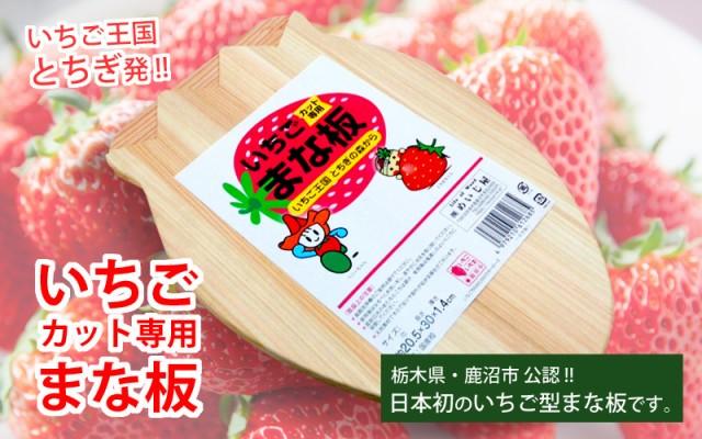 送料無料★日本で初めてのいちご型!【国産品/国...