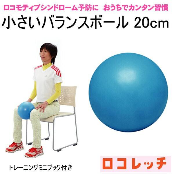 ロコレッチ 小さいバランスボール(ミニボール20c...