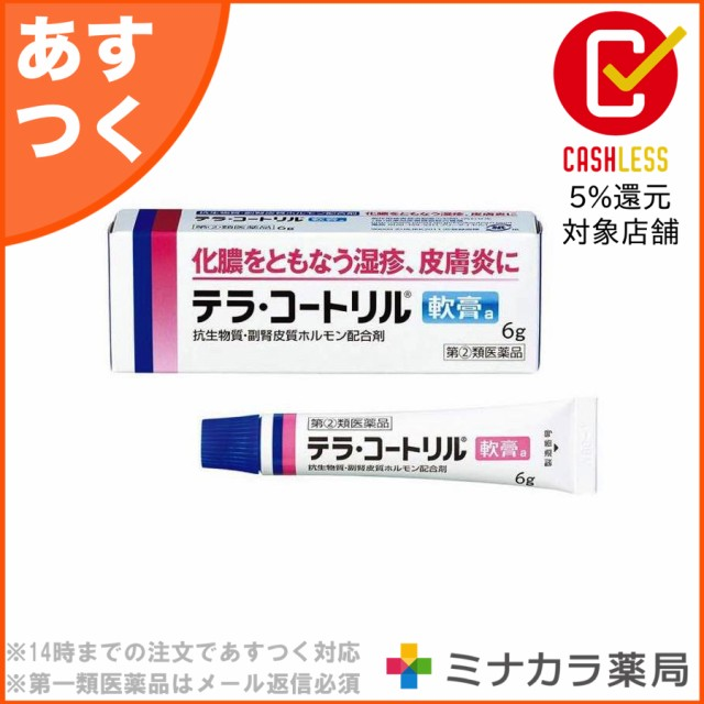 【指定第2類医薬品】テラ・コートリル軟膏a 6g 処...