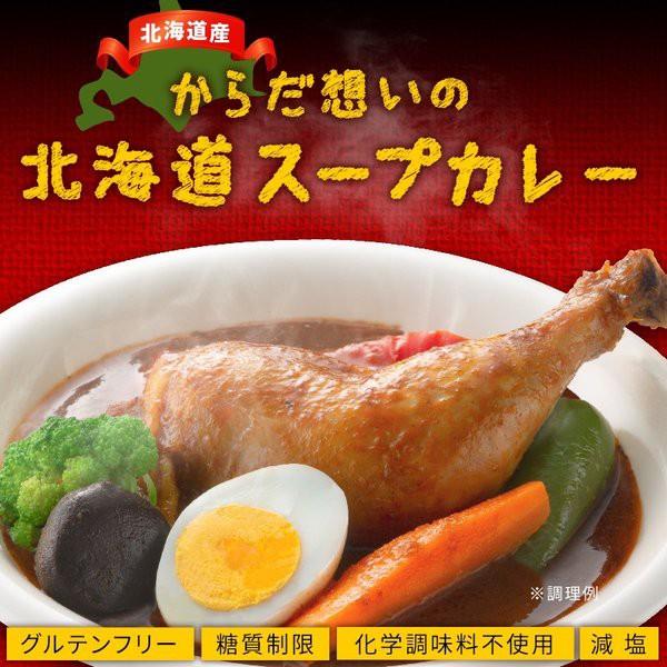 スープカレー レトルト からだ想いの北海道スープ...