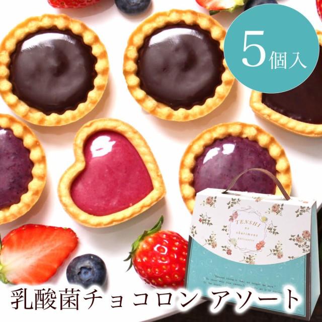 ホワイトデーお返し【乳酸菌チョコロン アソート5...