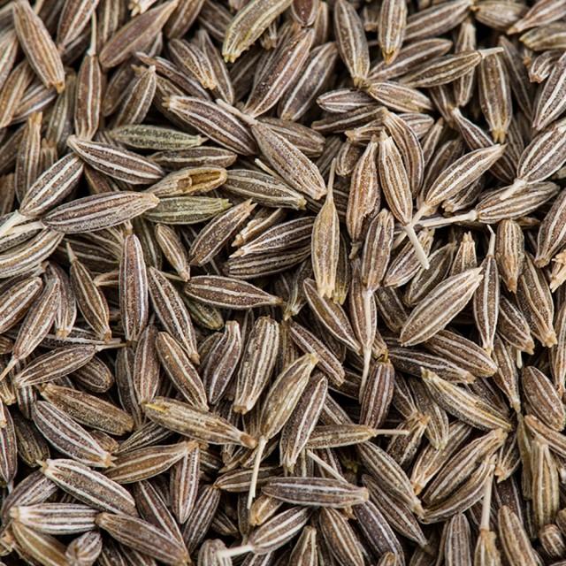 クミンシード 100g,Cumin Seeds,ジーラ,Jeela,孜...