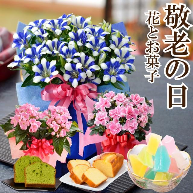 遅れてゴメンね 敬老の日 ギフト プレゼント 花とスイーツ ギフト 選べるお花 リンドウ白寿 におい桜 アザレア 選べる お菓子 琥珀糖 抹