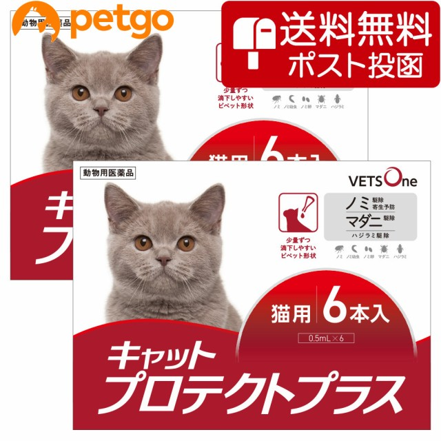 【ネコポス(同梱不可)】【2箱セット】ベッツワン ...