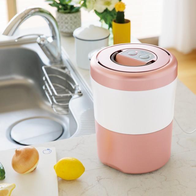 キッチン 家電 電化製品  生ごみ減量乾燥機 パリパリキューブライトアルファ 脱臭フィルター2個セット 563510