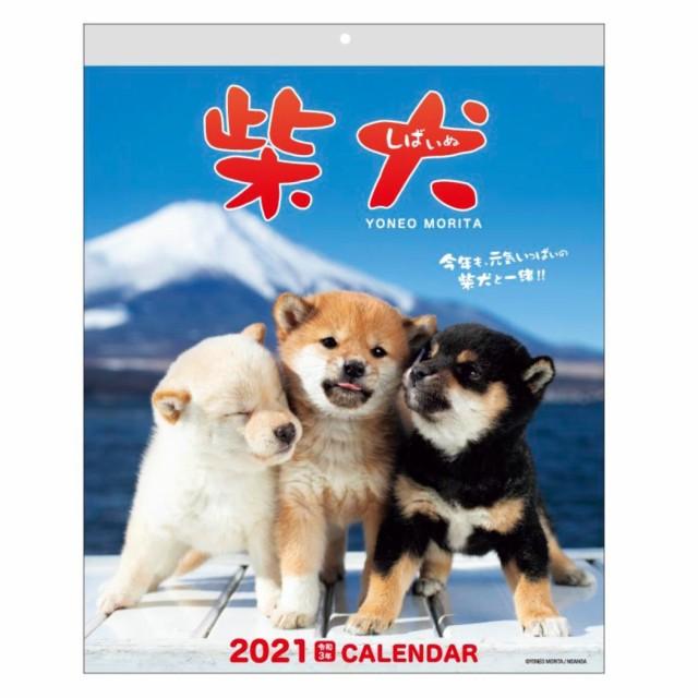 カレンダー 2021 壁掛け スケジュール 森田米雄 ...