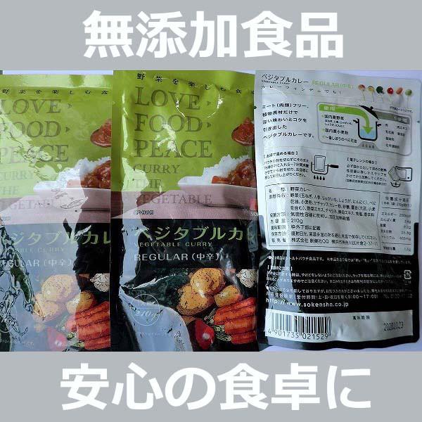無添加 ベジタブルカレーREGULAR【中辛】レトルト...