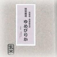 特別栽培 ゆめぴりか 玄米 5Kg×2袋 (天恵農場)