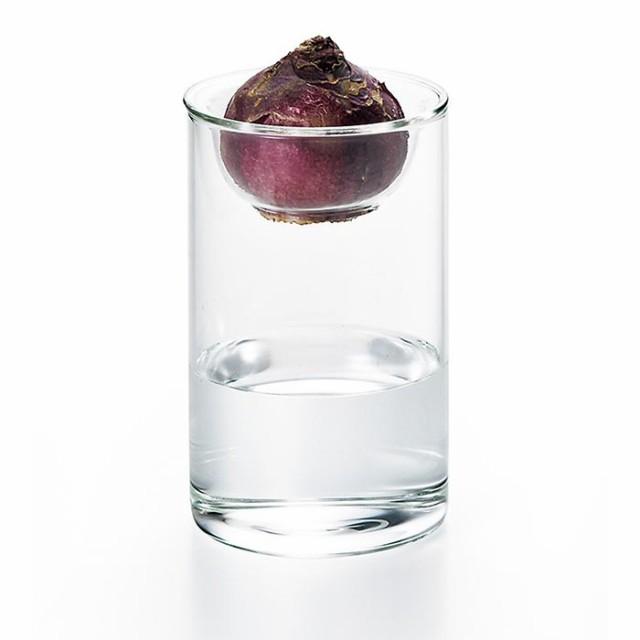 ガラス おしゃれ 水耕栽培ポット アポウルベース ...