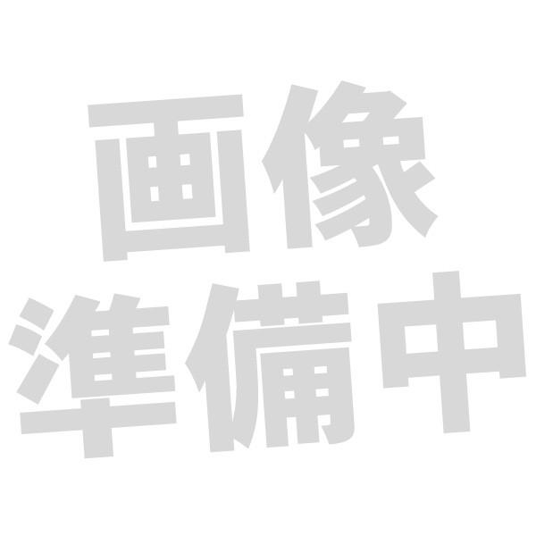 【お取り寄せ】 SONY ソニー STH40D用リングサポ...