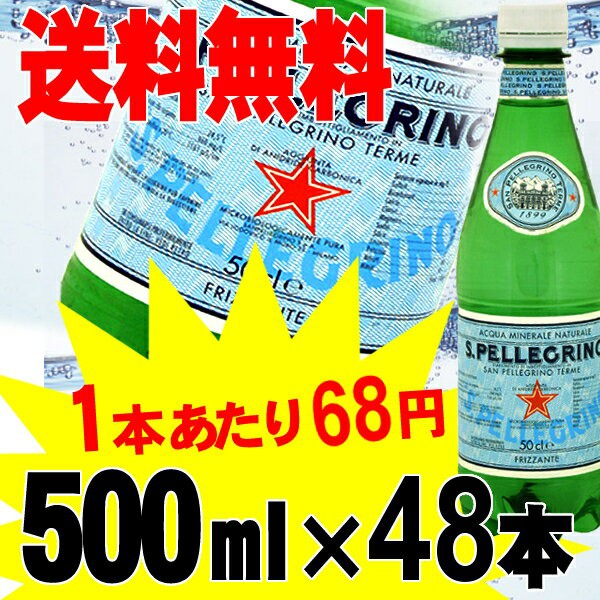 サンペレグリノ 500ml 48本 炭酸水  送料無料 天...