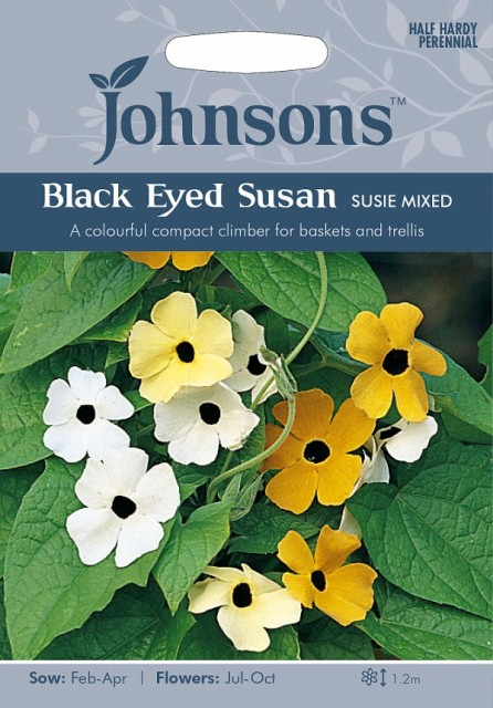 【輸入種子】Johnsons Seeds BLACK EYED SUSAN Su...