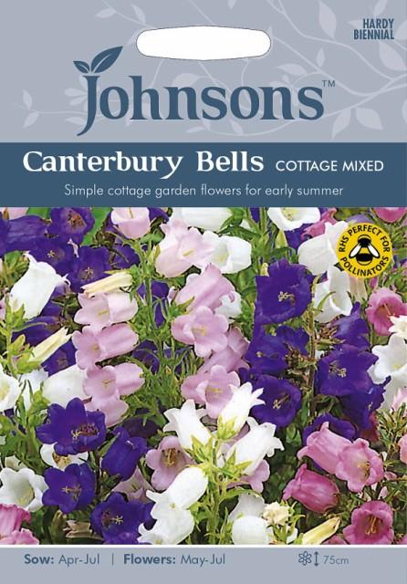 【輸入種子】Johnsons Seeds Campanula Canterbur...