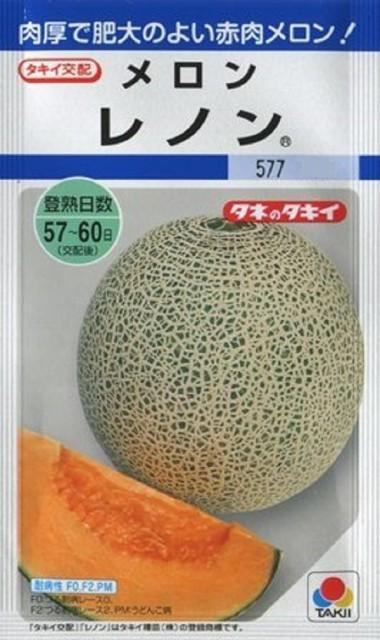 【種子】メロン レノン タキイ種苗のタネ