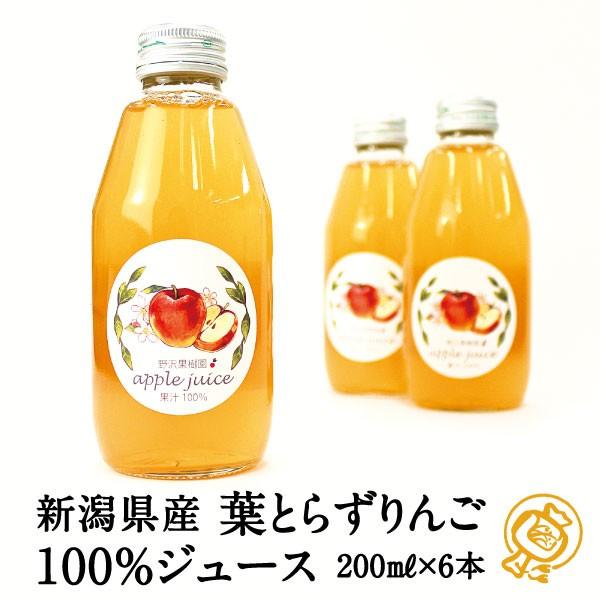 【送料無料】新潟県産葉とらずりんごを使ったとっ...