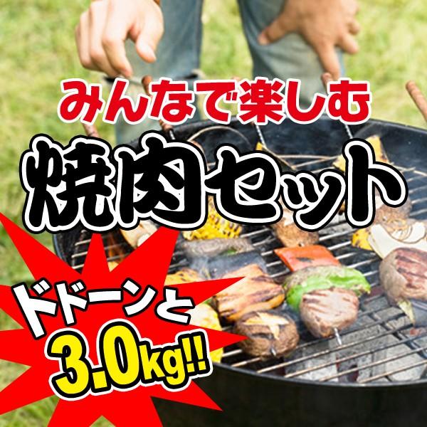 牛肉 黒毛和牛 A5 みんなで楽しむ焼肉セット3.0kg...