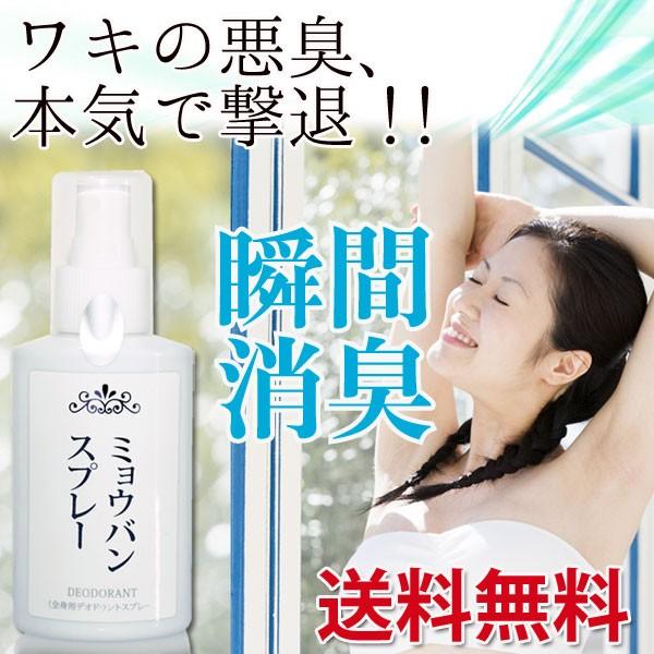 【送料無料】ミョウバンスプレー100ml(約3か月分...