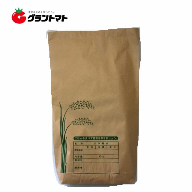 米袋 新袋印刷Aタイプ 10kgサイズ 1枚 2重構造の...