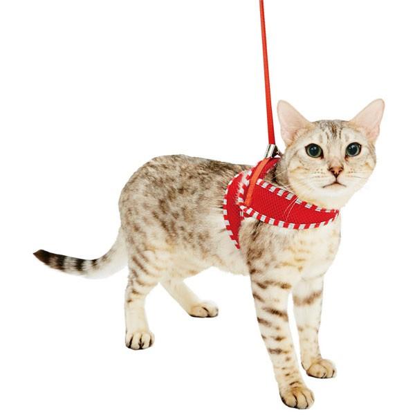 ペティオ Anycat ハーネス ストライプ M レッド 赤 猫 ネコ用 胴輪 ハーネス 生地 布 猫 ネコ 短毛 長毛 〜7kg 365日気分が高まる さ