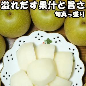 梨 ギフト 美味しい なし 糖度 うまい ナシ 熊本 旬の梨 約2.5kg 贈答用 送料無料 品種 愛冠水 幸水 豊水 あきづき 秋月 南水 新興 新高