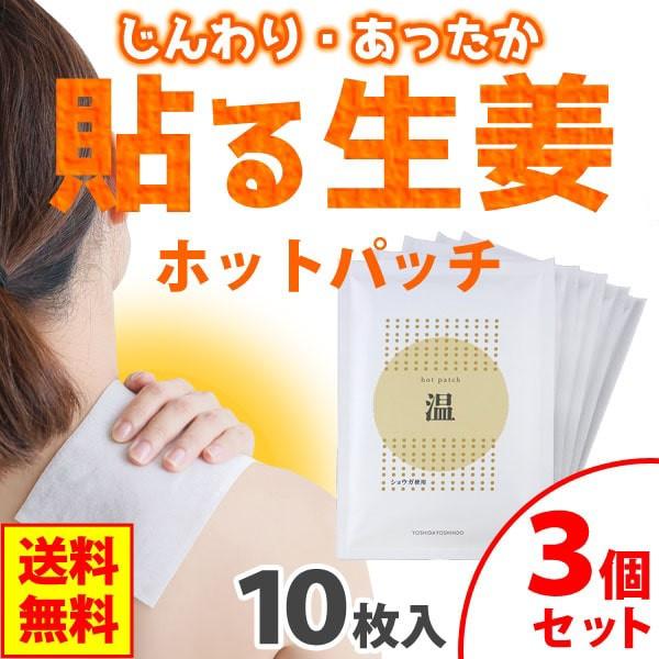 ホットパッチ(10枚入(1枚10cm×14cm))【3個セ...