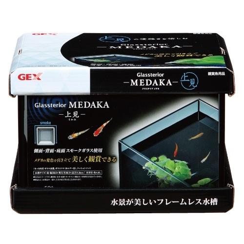 GEX グラステリア メダカ 上見 幅20cm メダカを...