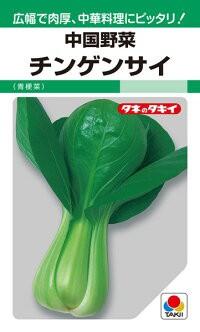 タキイ種苗 中国野菜 チンゲンサイ(青梗菜)MF