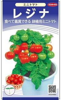 サカタのタネ トマト レジナ(鉢植え用)小袋