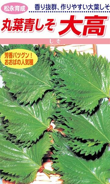 松永種苗 シソ 紫蘇 丸葉青しそ 大高 小袋