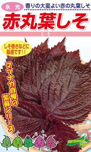 松永種苗 シソ 紫蘇 赤丸葉しそ 小袋