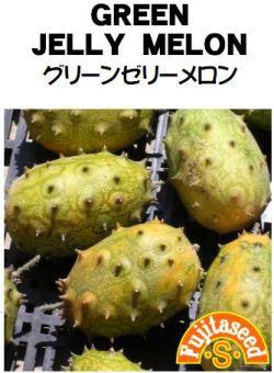藤田種子 グリーンゼリーメロン 小袋