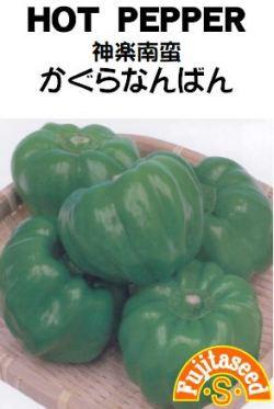 藤田種子 かぐらなんばん(神楽南蛮)小袋