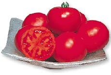 丸種 トマト 優美 1000粒