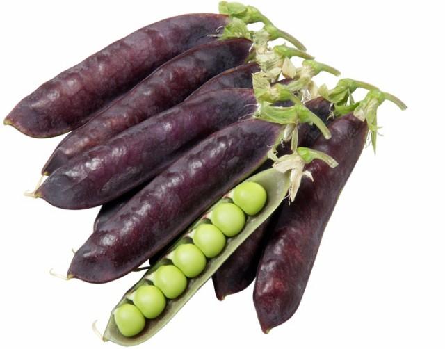 大和農園 エンドウ ツタンカーメンのエンドウ豆 ...