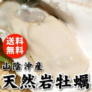 天然岩牡蠣1kgセット(5個前後入) 山陰沖産  送...