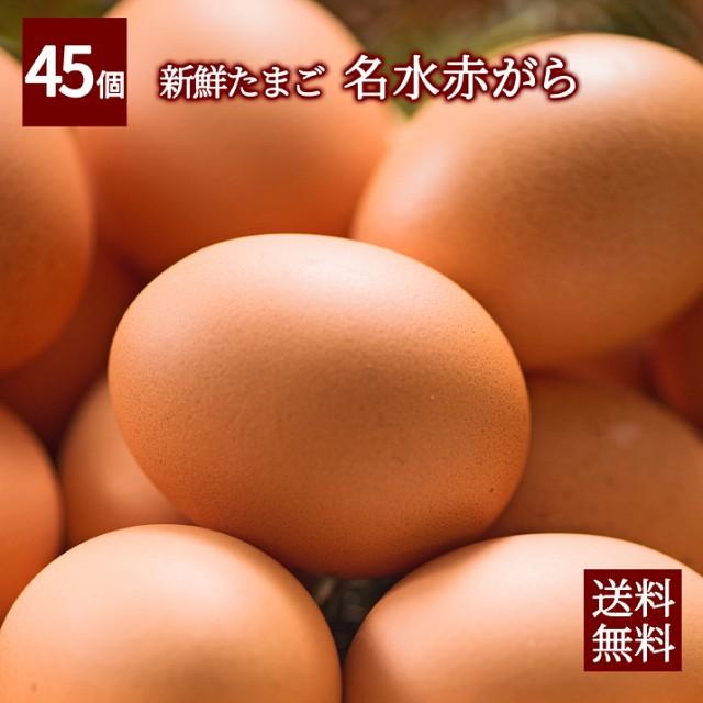 【美味しさ保障 送料無料】名水百選の水使用!出...