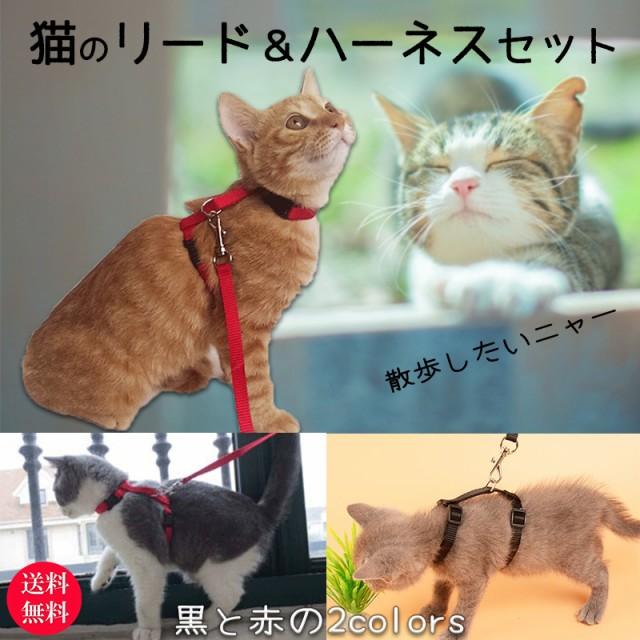 猫 リード ハーネス 猫用品 首輪 一体型 おしゃれ 散歩 リード&ハーネスセット ねこ ネコ