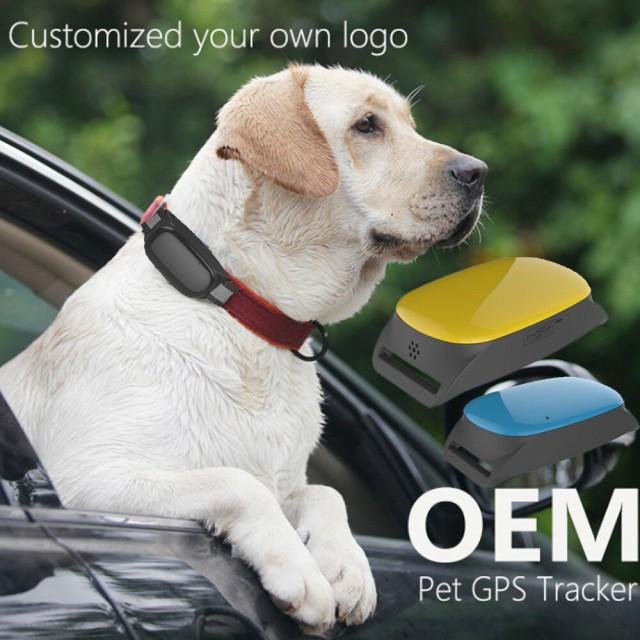 猫犬追跡装置 GPS 防水 スマート リアルタイム ロ...