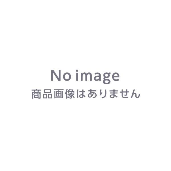 立つ湯たんぽ レディース&ベビー 2L袋付  【...