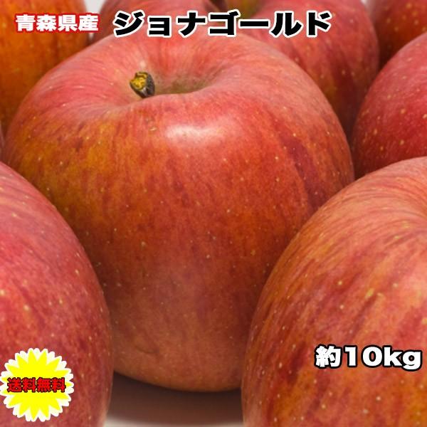 りんご 訳あり 10Kg 青森県 ジョナゴールド 10kg 送料無料 ご家庭用 糖度保証 青森県産 青森県 糖度保証 毎日の健康