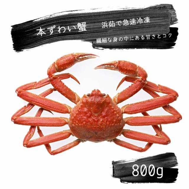 本ずわい蟹 800g 茹で上げ急速冷凍
