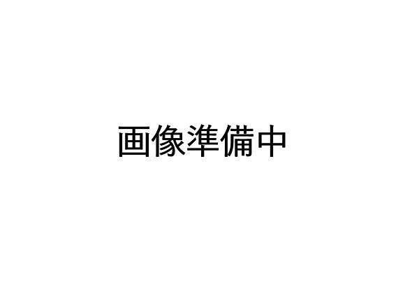【メール便対応可能】SANYO(サンヨー) LINT-14 ...